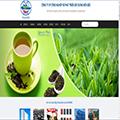 Website công ty cổ phần miền bắc Vilaconic.com